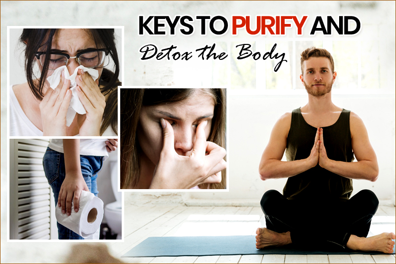 Keys to Purify and Detox the Body