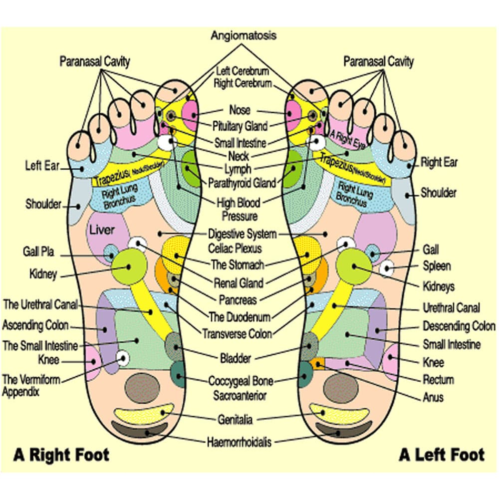 Buy Detox Foot Patches (Box of 10) @ 13$ as low as @ 9 1