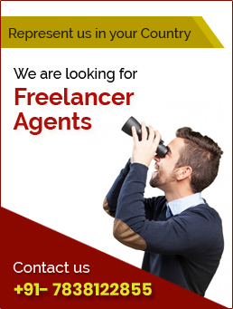 Freelacer Agents